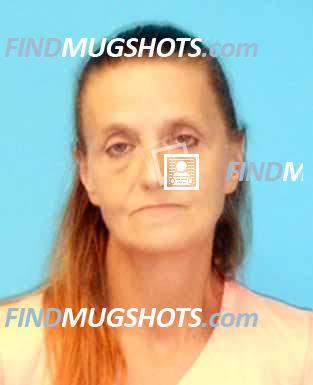 Find Dixie Florida Mugshots - Find Mugshots