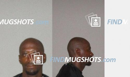 Tonda Ihetu Royal Mugshot and Arrest Record ID: 46327025 (Flagler
