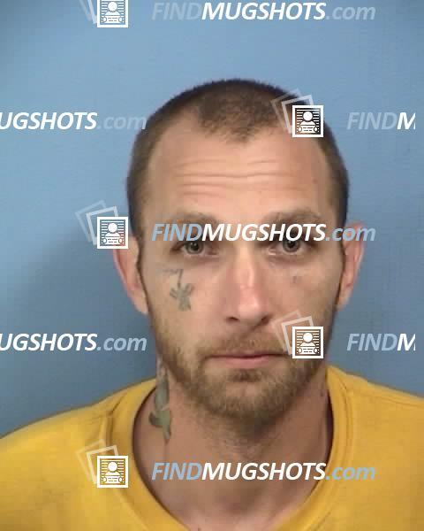 John Waszak Mugshot and Arrest Record ID: 7253058 (DuPage