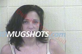 Brandi Marie Sendelweck Mugshot and Arrest Record ID