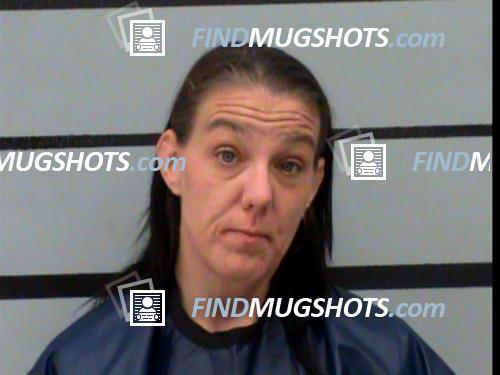 Heidi Lee Stockhofer Mugshot and Arrest Record ID: 46419472 (Lubbock